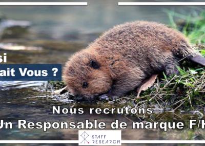 RESPONSABLE DE MARQUE . H-F